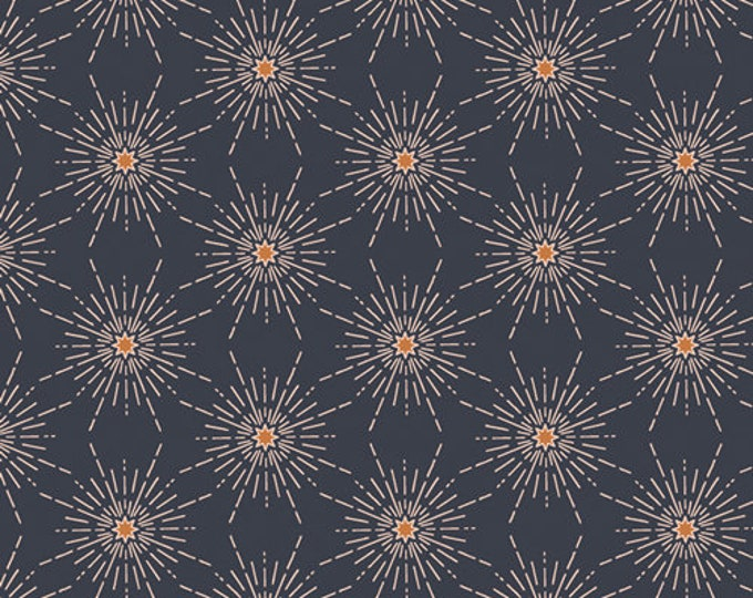 Art Gallery Fabrics - Enchanted Voyage by Maureen Cracknell - North Star Gloom ENV-71786 - Cotton Woven Fabric