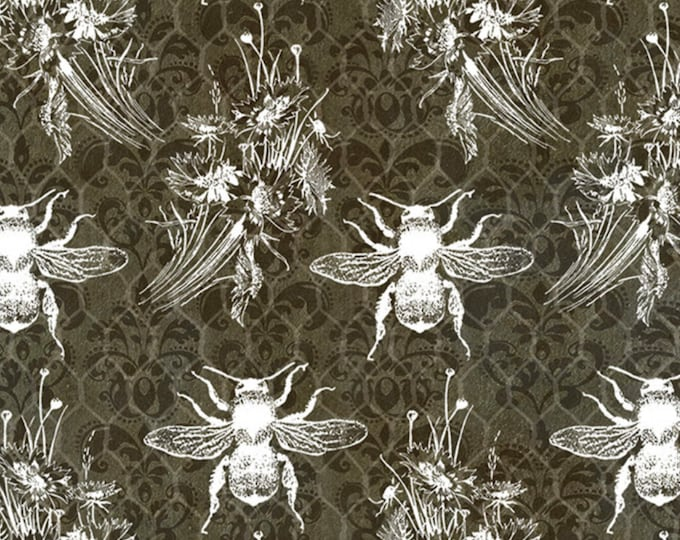 Studio E Fabrics - Bee Sweet by Cerrito Creek **Limited Release** - Bees and Honeycomb Chalkboard - 5123-99 - Cotton Woven Fabric