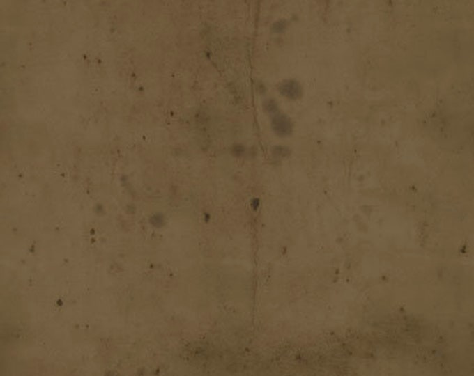 CLEARANCE -    ! Free Spirit Fabric  - Provisions by Tim Holtz -  Sepia  Cotton Woven Fabric- 1 yard listing