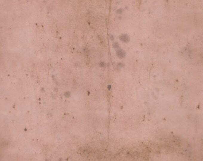 CLEARANCE -    ! Free Spirit Fabric  - Provisions by Tim Holtz -  Rose Cotton Woven Fabric- 1 yard listing