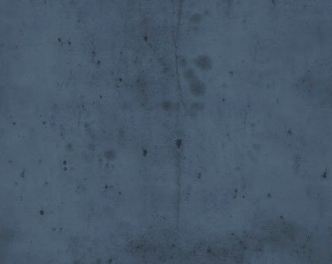 CLEARANCE -      Free Spirit Fabric  - Provisions by Tim Holtz -  Denim Cotton Woven Fabric- 1 yard listing