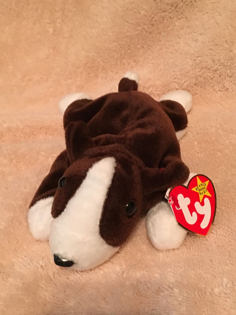 901888a4bb1 TY Beanie Baby BRUNO the Bull Terrier Dog Pristine with