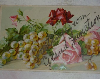 Glittered Letters- Greetings From Grand Junction With Grapes and Roses Antique Postcard