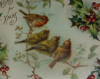 NEW Listing**Robins and Holly Antique Christmas Postcard