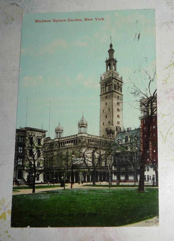 Madison Square Garden New York Street View Antique Postcard   Etsy