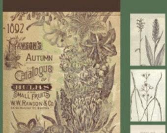 Floral Sticker Sheets, Vintage-styled