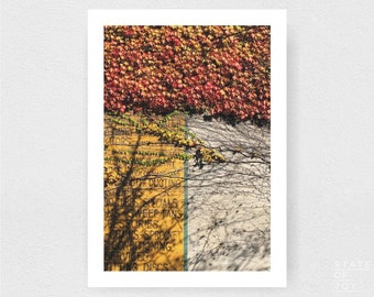 autumn - leaves - travel - farm photograph - country decor - wall art - portrait - square prints | LARGE FORMAT PRINT