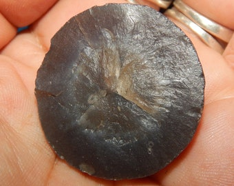 Genuine BOTRYOIDAL CHALCEDONY Half - Genuine Grey Grape Agate - Raw Gemstones - Reiki - Chakra Stones - Gemstone Collections - Crystals