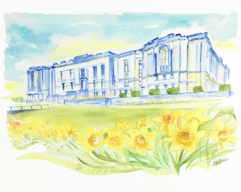 "Signed and Titled Fine Art Print ""The National Library of Wales and Daffs"" from an original artwork by Sian Bowman"
