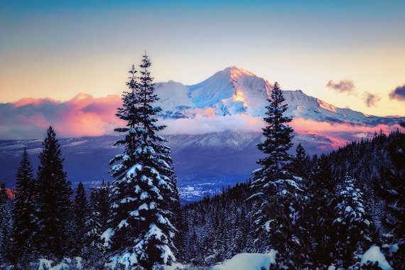 A Glimpse  (CANVAS) Mount Shasta and Mt. Shasta City in Northern California snow covered trees