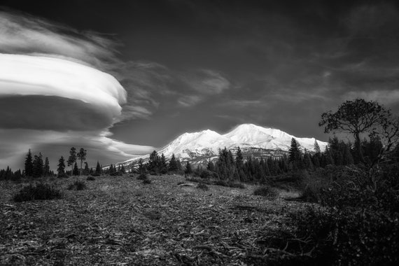A Wonderful World We Live In (Metal Panel) Mount Shasta and a Lenticular Cloud in black and white