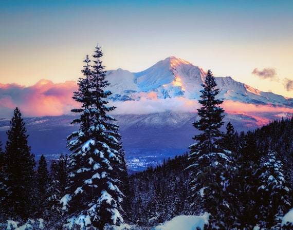 A Glimpse (Prints) Mount Shasta and Mt. Shasta City through the snow covered trees