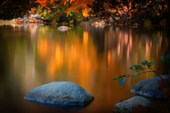 Fall on the Water (Metal Panel) Brandy Creek Whiskeytown Lake fall colors