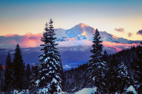 A Glimpse (Metal Panel) Mount Shasta and Mt. Shasta City through the snow on the trees