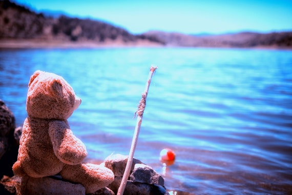 Have you ever seen a bear fishing (Metal Panel) just a teddy bear fishing at the lake