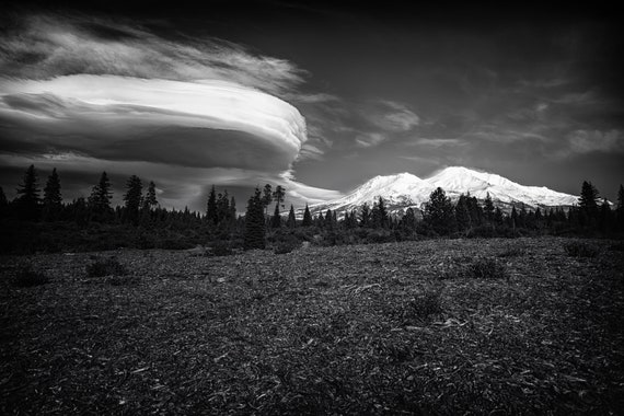 Lenticular Madness (Metal Panel) Mount Shasta and a Lenticular Cloud in black and white