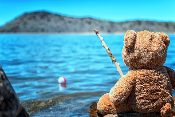 Waiting for Walter (Metal Panel) just a teddy bear fishing at the lake