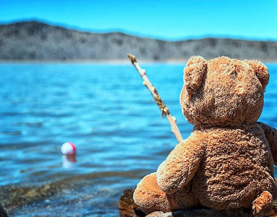 Waiting for Walter  (prints) just a teddy bear fishing with his pole and bobber