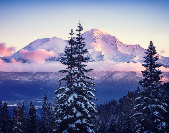 A Glorious Beginning (Prints)  a sunrise on Mt. Shasta with snow covered trees