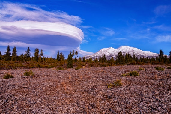 Lenticular Love (Metal Panel) Mount Shasta and a Lenticular Cloud