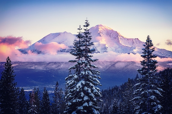 Glorious Beginning (Prints)  a sunrise on Mt. Shasta with snow covered trees