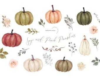 Modern Sage and Peach Pumpkin clipart, Elegant Pumpkin watercolor clipart, Fall autumn Floral Leaves, Greenery Pumpkin Digital Clip art