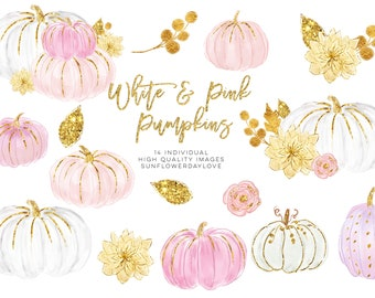 White and Pink Pumpkins, Watercolor Pastel Pumpkins, Pastel Pumpkins, Watercolor fall clipart, Pink Pumpkin, White pumpkin, peach pumpkin