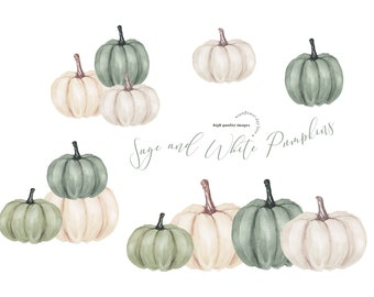 Elegant Sage and White Pumpkins clipart, Watercolor Fall Pumpkin Elements, Ivory white Pumpkin illustration, Greenery Autumn floral Leaves