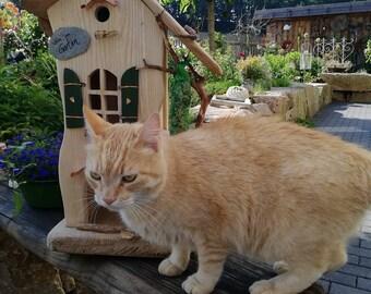 individual birdhouse with nesting box, birdhouse, feeder, unique, nesting box for