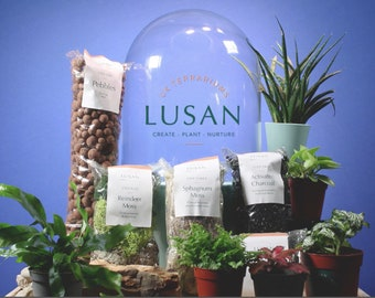 Dome by Lusan: Self-Sustaining Ecosystem