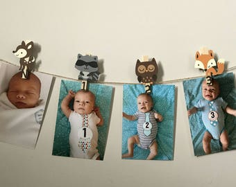 Woodland First Birthday, Woodland Monthly Photo Banner, Woodland Birthday Party, Forest Friends First Birthday, N-12 Picture Banner