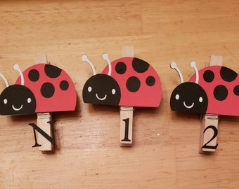 Lady Bug First Birthday Party, Lady Bug Party, Lady Bug Monthly Photo Banner, N-12 Pictures