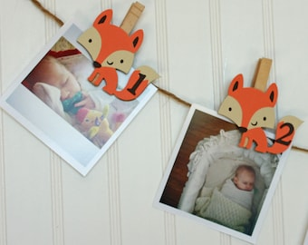 Fox First Birthday Decorations, Fox Party Monthly Photo Banner, Woodland First Birthday Party, Fox Monthly Pins, N-12 Pictures
