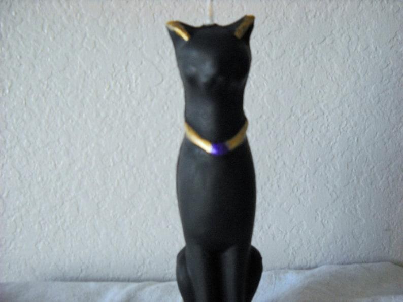 Ciré noir chatte
