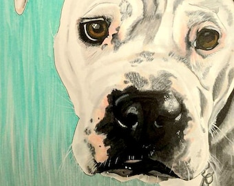 Custom Pet Portrait from Photo, Pet Memorial Gift, Color Illustration