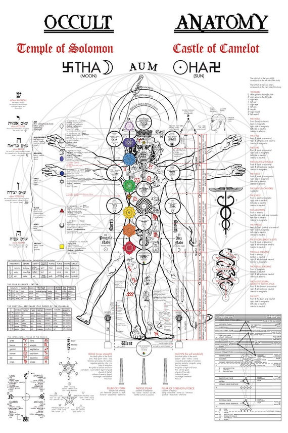 The Occult Anatomy Print Kabbalah Alchemy Tree of Life | Etsy