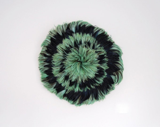 Feather shield , feather art ,