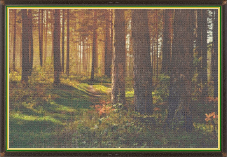 Autumn Woods Serenity Path Thru the Fall Forest Afternoon image 0