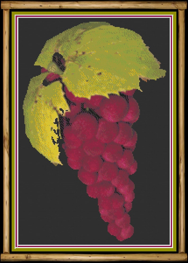 Bunch of Red Grapes Fall Fruit Themed Winery Themed Fresh image 0