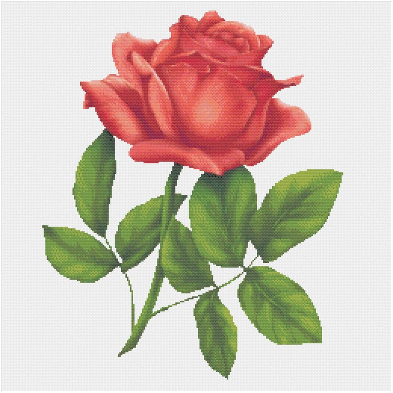 A Single Red Rose Romantic Floral Valentine's Day image 0