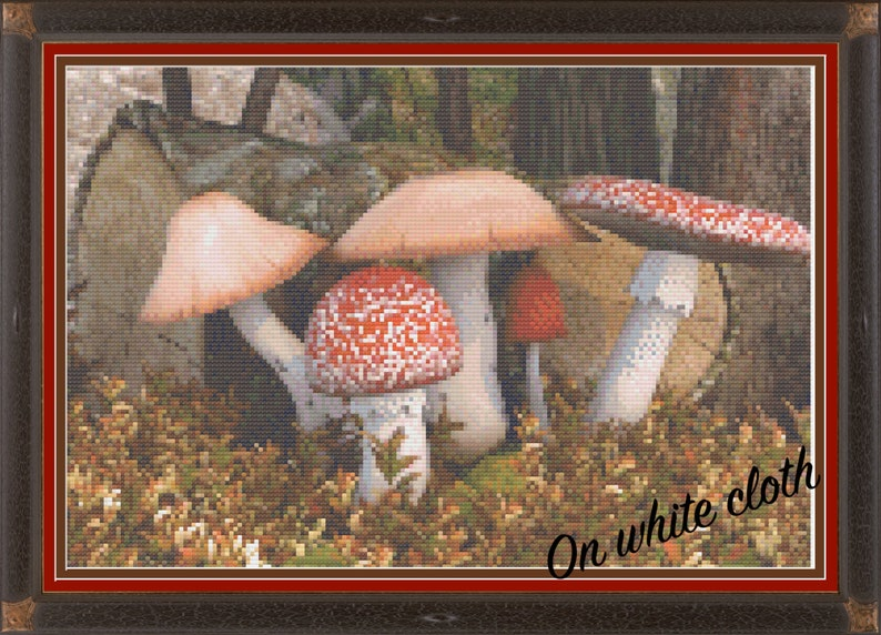 Mushroom Patch Toadstools in the Forest Deep in the image 0