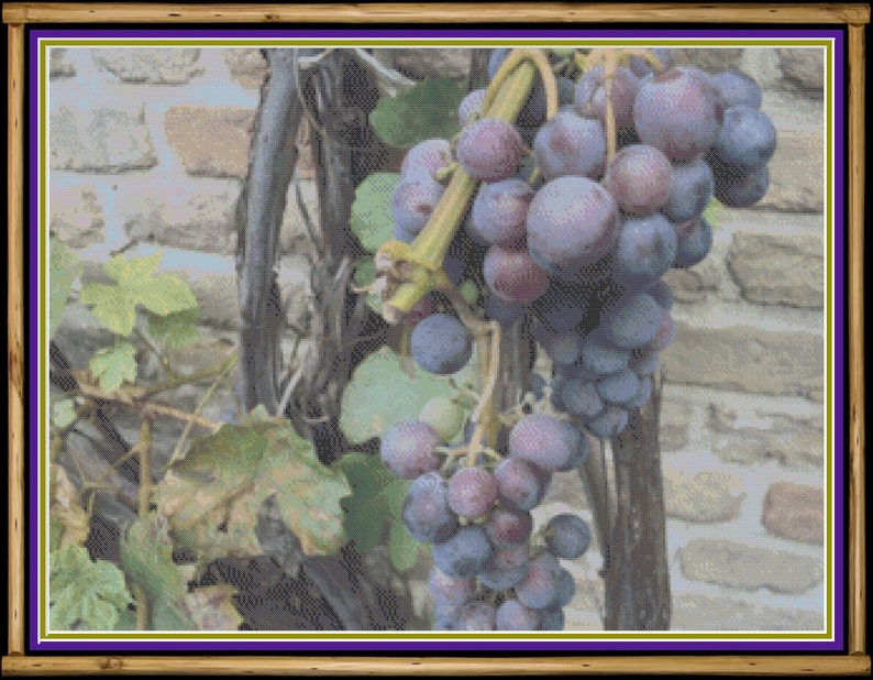 Grape Vined Wall Cross Stitch Pattern image 0