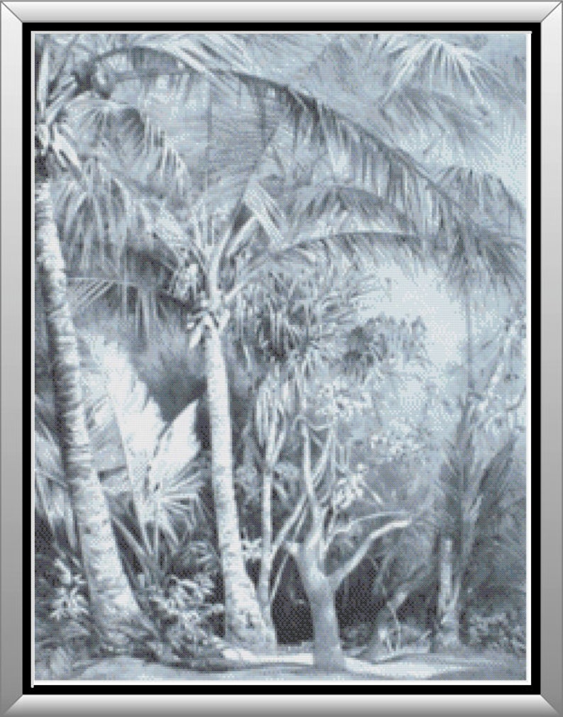 Deserted Tropical Beach in Gray Scale Artistic Secluded Beach image 0
