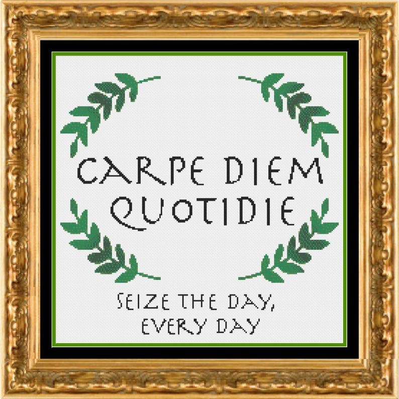 Carpe Diem Quotidie Quote Seize the Day Every Day Quote image 0