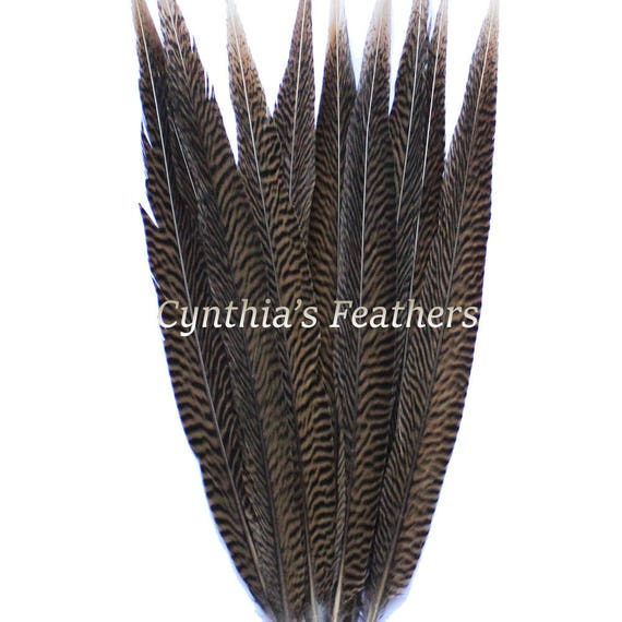 "6-8/"" half bronze emerald green schlappen coque rooster feathers pcs. 100 16g"