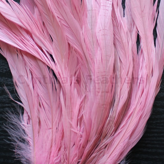 """25 pcs 10-12/"""" long Baby Pink Dyed Rooster COQUE tail Feathers for crafting"""