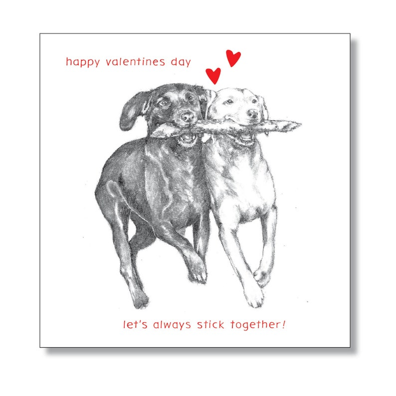 Valentines Day Card  From the Dog  Labradors in love  Dogs image 0