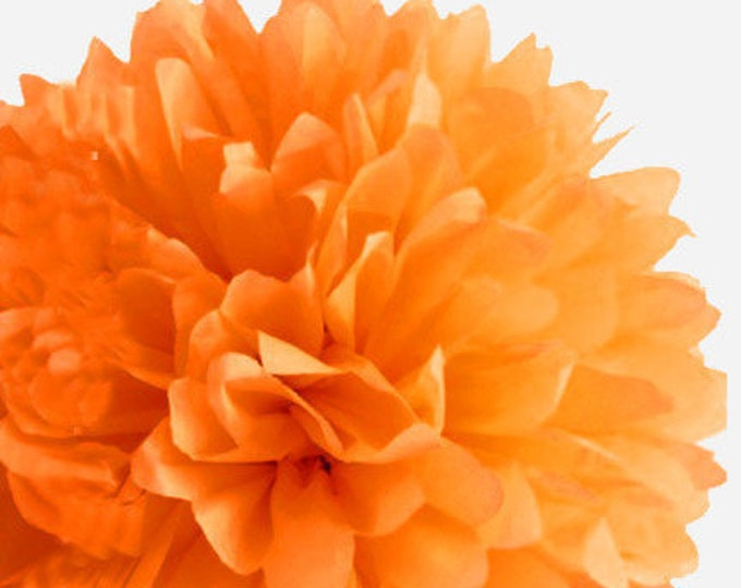 Orange Tissue Paper Pom, Orange Pom, Orange Tissue Paper Pom Pom, Orange Paper Flower, Tissue Flower, Wedding and Birthday Party Decor, Poms