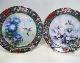 & Hummingbird plates | Etsy
