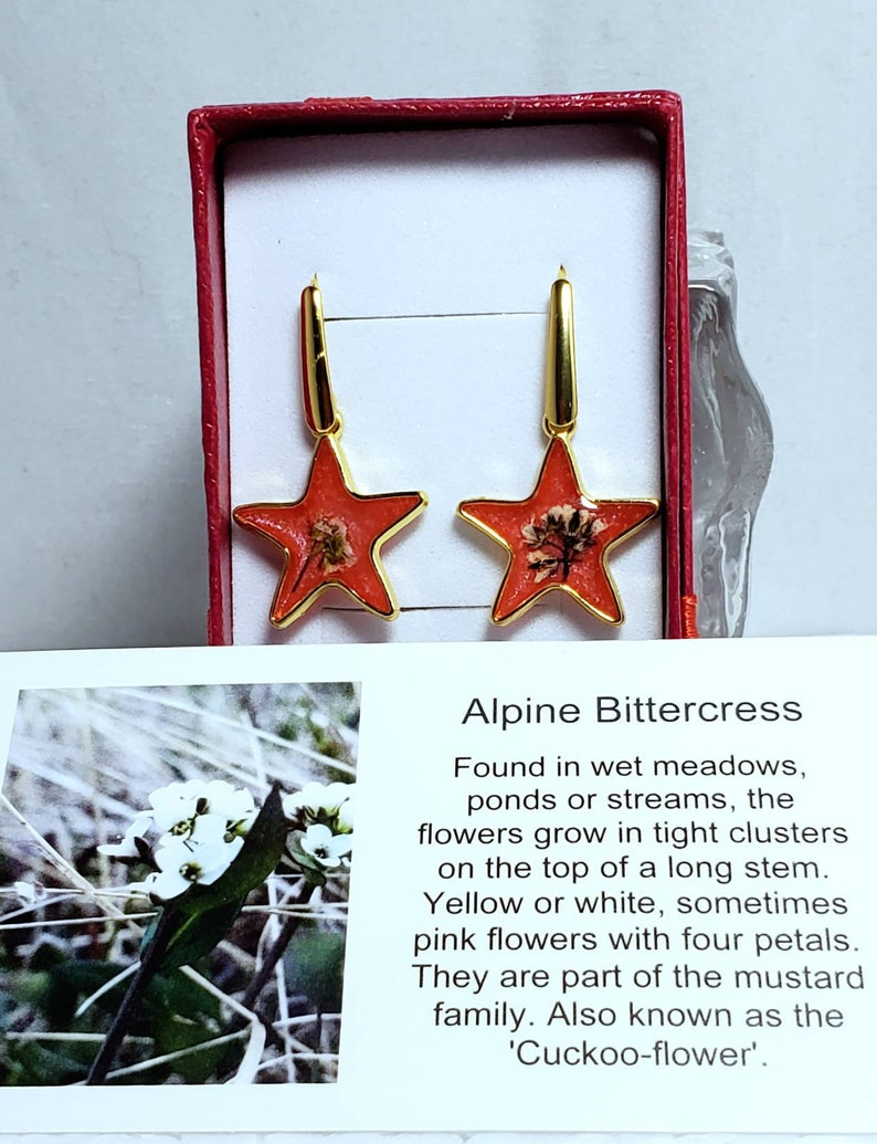 Handmade celestial flower earrings tiny colourful moon and star dropsdangles resin floral starscape jewelry
